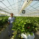 苗床の湯を太陽熱で支援